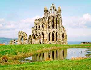 whitby - abbey
